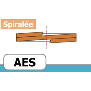 BAGUE ANTI-EXTRUSION FORME AES